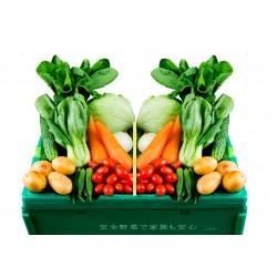 ベトナム人用ご近所お試し野菜BOX(ミニ)