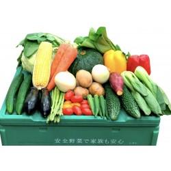お試ししゅんの野菜BOX